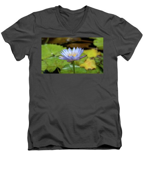 Blue And Yellow Water Lily Men's V-Neck T-Shirt