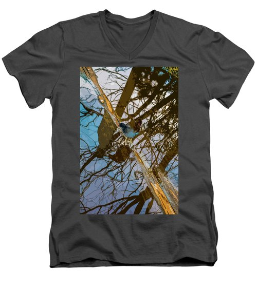 Blue Bird Men's V-Neck T-Shirt