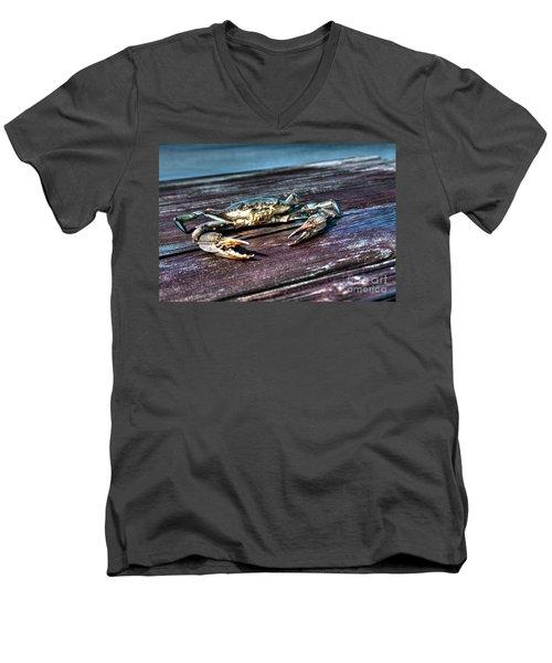 Blue Crab - Above View Men's V-Neck T-Shirt