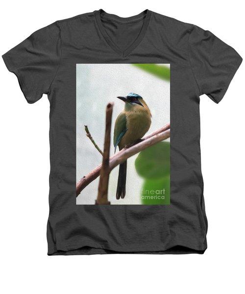 Blue-crowned Motmot Oil Men's V-Neck T-Shirt