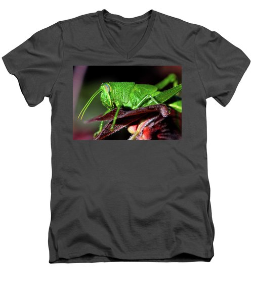 Blue Eyed Green Grasshopper 001 Men's V-Neck T-Shirt