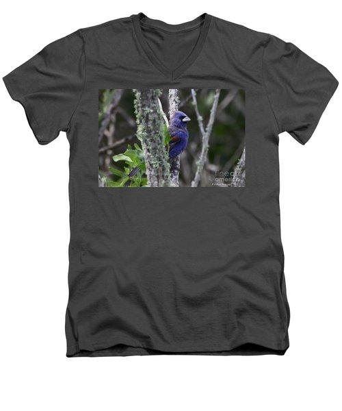 Blue Grosbeak In A Mangrove Men's V-Neck T-Shirt