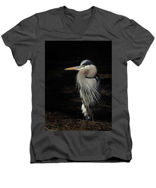 Blue Heron Gaze Men's V-Neck T-Shirt