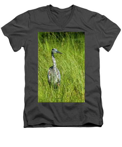 Men's V-Neck T-Shirt featuring the photograph Blue Heron In A Marsh by Paul Freidlund