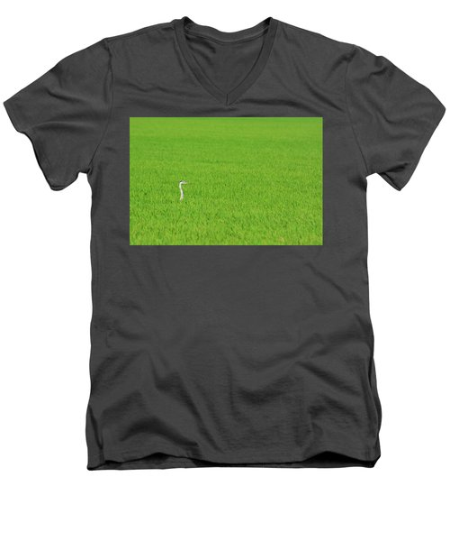 Blue Heron In Field Men's V-Neck T-Shirt by Josephine Buschman