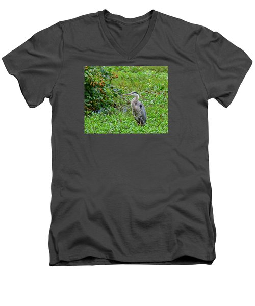 Blue Heron Men's V-Neck T-Shirt by Kathy Eickenberg
