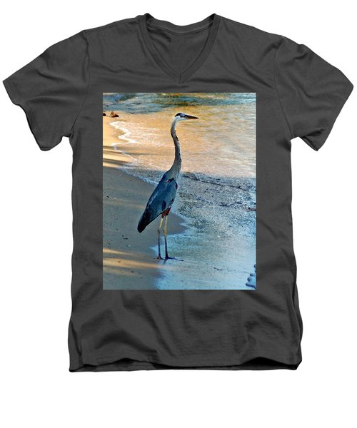 Blue Heron On The Beach Close Up Men's V-Neck T-Shirt