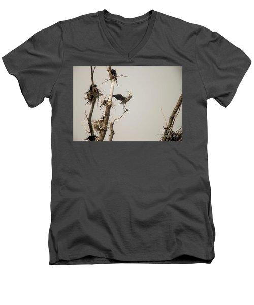 Men's V-Neck T-Shirt featuring the photograph Blue Heron Posing by David Bearden