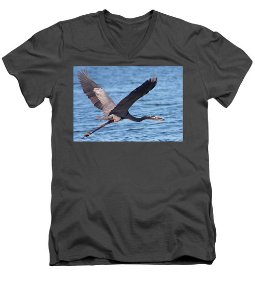 Blue Heron Wingspan Men's V-Neck T-Shirt