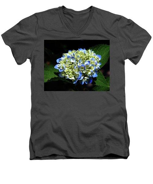 Blue Hydrangea Onstage 2620 H_2 Men's V-Neck T-Shirt