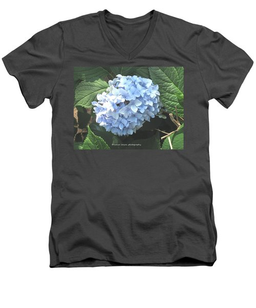Blue Hydrangnea Men's V-Neck T-Shirt
