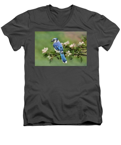 Blue Jay And Blossoms Men's V-Neck T-Shirt
