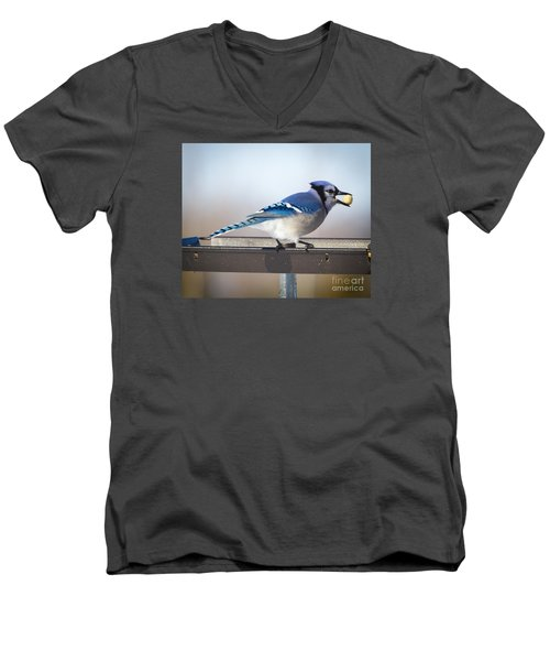 Blue Jay With A Mouth Full Men's V-Neck T-Shirt by Ricky L Jones