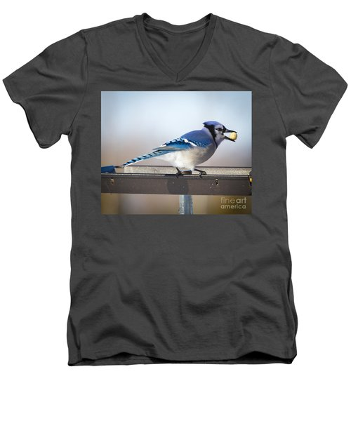 Blue Jay With A Mouth Full Men's V-Neck T-Shirt