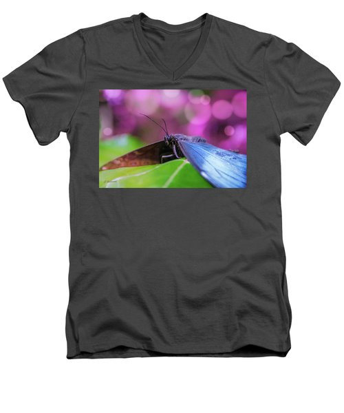 Blue Morpho  Butterfly 2 Men's V-Neck T-Shirt