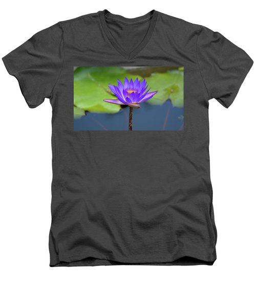 Blue Purple And Orange Water Lily Men's V-Neck T-Shirt