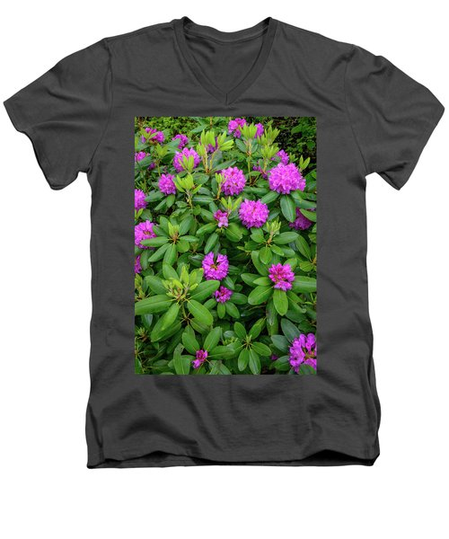 Blue Ridge Mountains Rhododendron Blooming Men's V-Neck T-Shirt
