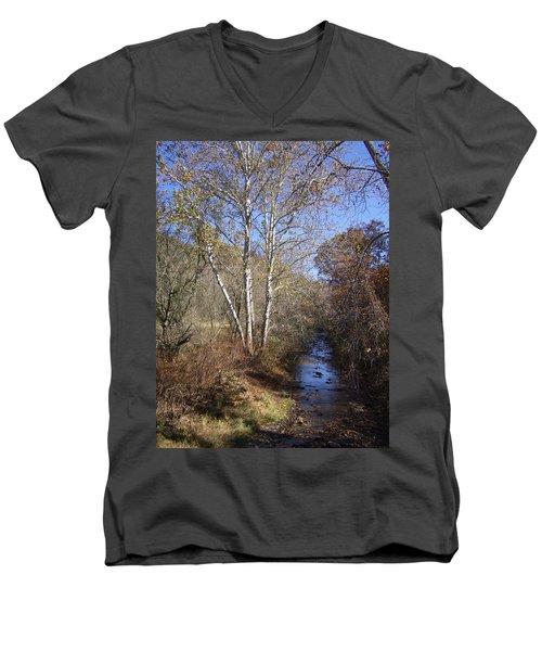 Blue Skies Men's V-Neck T-Shirt