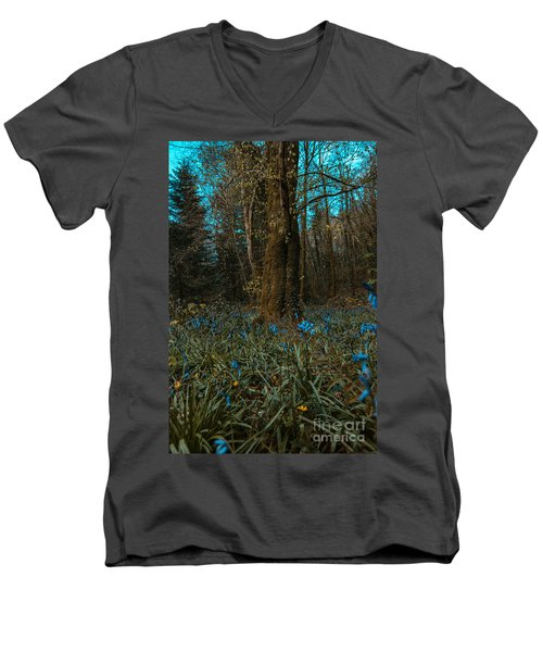Bluebells In Lismore Forest 2 Men's V-Neck T-Shirt