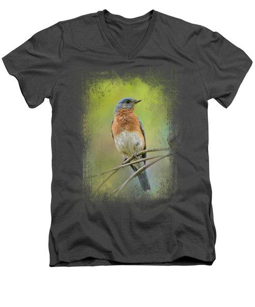 Bluebird On A Spring Day Men's V-Neck T-Shirt