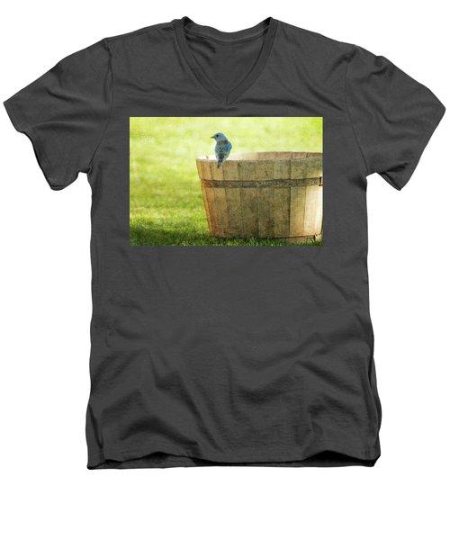 Bluebird Resting On Bucket, Textured Men's V-Neck T-Shirt