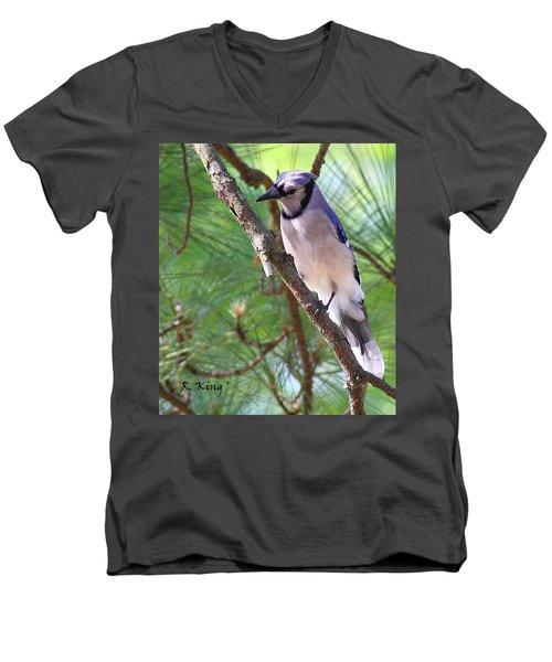 Bluejay Men's V-Neck T-Shirt