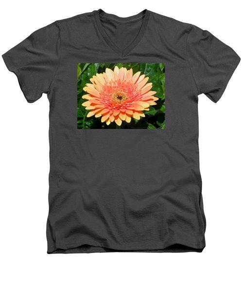 Blushing Zinnia Men's V-Neck T-Shirt
