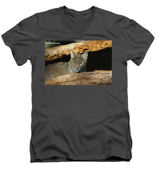Bobcat Hiding In A Log Men's V-Neck T-Shirt