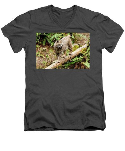 Bobcat In Forest Men's V-Neck T-Shirt by Teri Virbickis