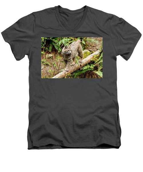 Bobcat In Forest Men's V-Neck T-Shirt
