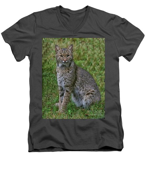 Bobcat On Alert Men's V-Neck T-Shirt