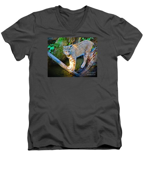 Bobcat Scanning The Water Men's V-Neck T-Shirt by Ansel Price