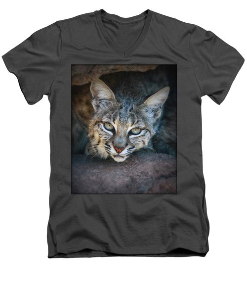 Bobcat Stare Men's V-Neck T-Shirt