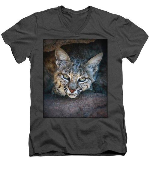 Bobcat Stare Men's V-Neck T-Shirt