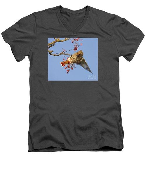 Bohemian Waxwing Men's V-Neck T-Shirt by Liz Leyden