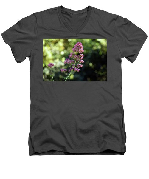Bokeh Of Anacapri Flower Men's V-Neck T-Shirt