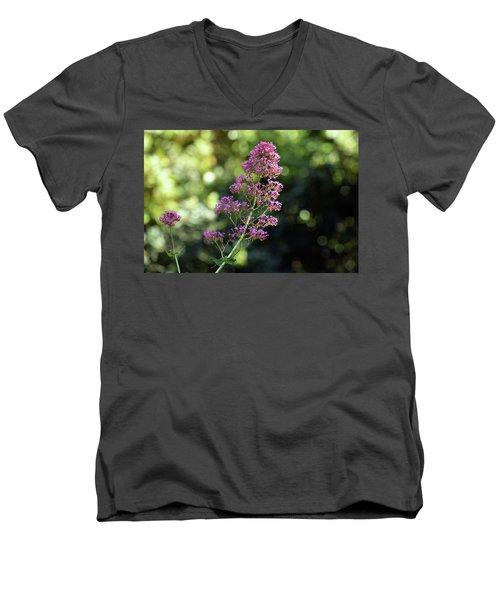 Bokeh Of Anacapri Flower Men's V-Neck T-Shirt