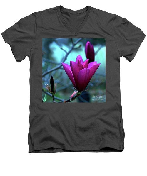 Bold Delicacy Men's V-Neck T-Shirt