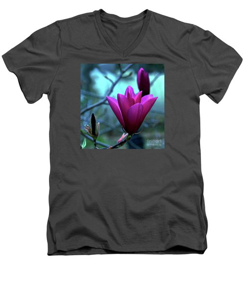 Bold Delicacy Men's V-Neck T-Shirt