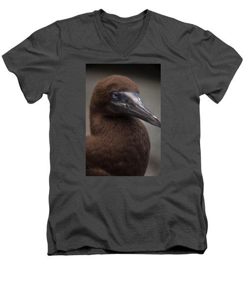 Booby Men's V-Neck T-Shirt
