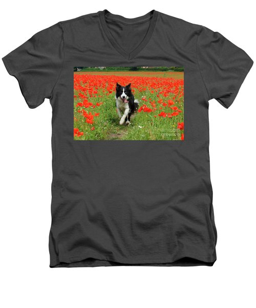 Border Collie In Poppy Field Men's V-Neck T-Shirt