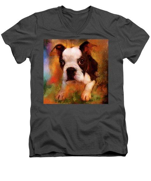 Boston Puppy Men's V-Neck T-Shirt