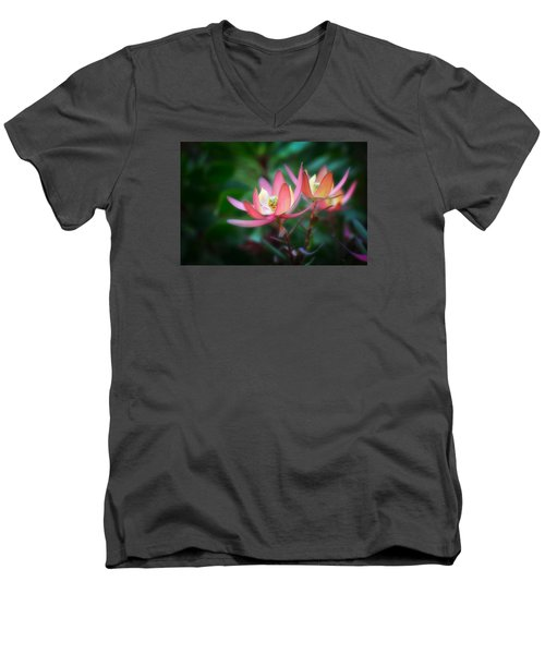 Botanic Garden Of Wales 1 Men's V-Neck T-Shirt