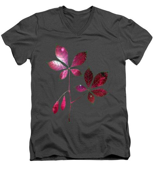 Botany 4 Men's V-Neck T-Shirt