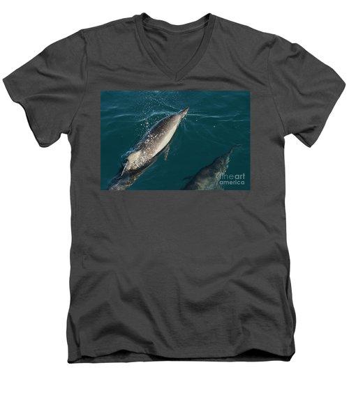 Bottle Nose Dolphin Men's V-Neck T-Shirt