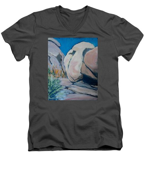 Boulder Men's V-Neck T-Shirt by Richard Willson