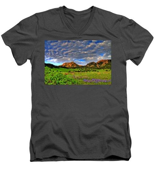 Boulder Spring Wildflowers Men's V-Neck T-Shirt by Scott Mahon