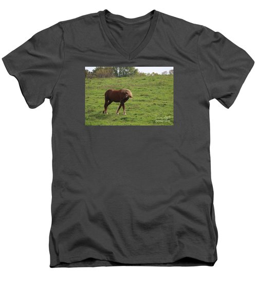 Bow  Men's V-Neck T-Shirt