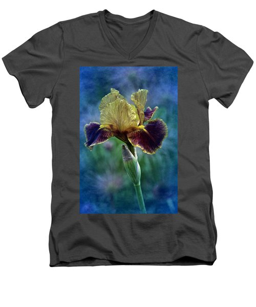 Vintage Boy Wonder Iris Men's V-Neck T-Shirt by Richard Cummings