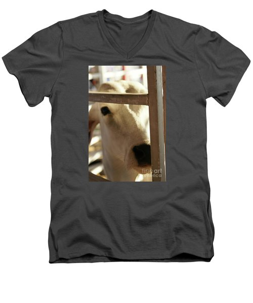 Men's V-Neck T-Shirt featuring the photograph Brahma Love - 2 by Linda Shafer